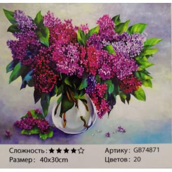 Алмазная мозаика ( 30 см х 40 см) GB7487..