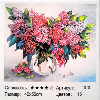 Алмазная мозаика+раскраска по номерам: 50*40 см, с..