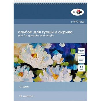 Альбом для гуаши и акрила 12л., А3, на с..